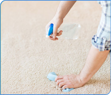 Carpet Cleaning - Gold Coast - Stain Removal