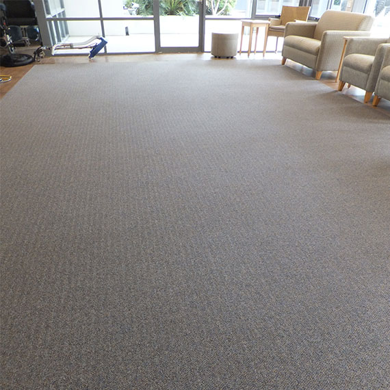 Carpet Cleaning - Gold Coast - After Carpet Cleaning